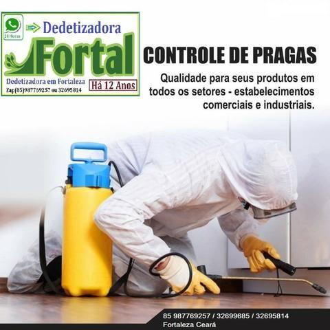 Dedetizadora Fortal, Dedetização e Limpeza de Caixa D´Água
