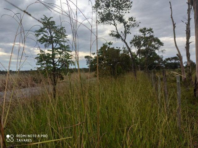 Terrenos Comerciais de 20.000 m² com Localização Privilegiada na MG-010 - Foto 8