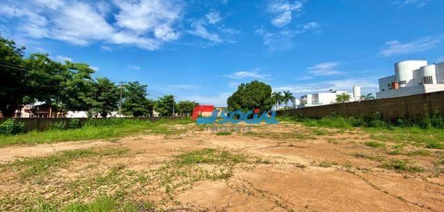 Ótimo terreno para locação com localização privilegiada, Av. Imigrantes em frente ao Play  - Foto 3