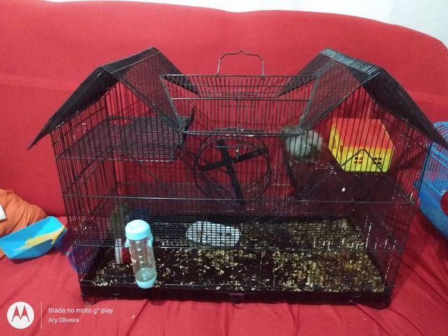 Vende-se gaiolas para hamster  - Foto 3