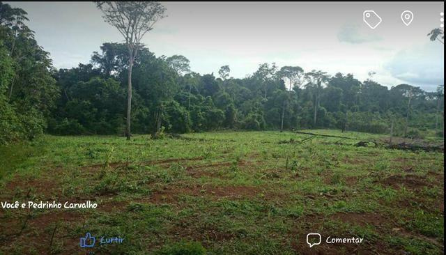 Chácara / Terreno localizada no Ramal dos Cocos a 09 km do centro da cidade de Altamira.
