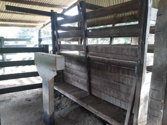 """Confinamento ou Laticínio na comunidade olho d""""agua na BR 364 a 30 km de Cuiabá - Foto 5"""