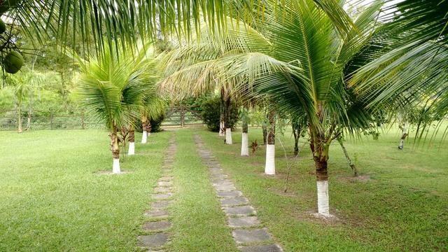 Belíssimo sítio em Agro Brasil - Cachoeiras de Macacu RJ 116 oportunidade!!!! - Foto 2