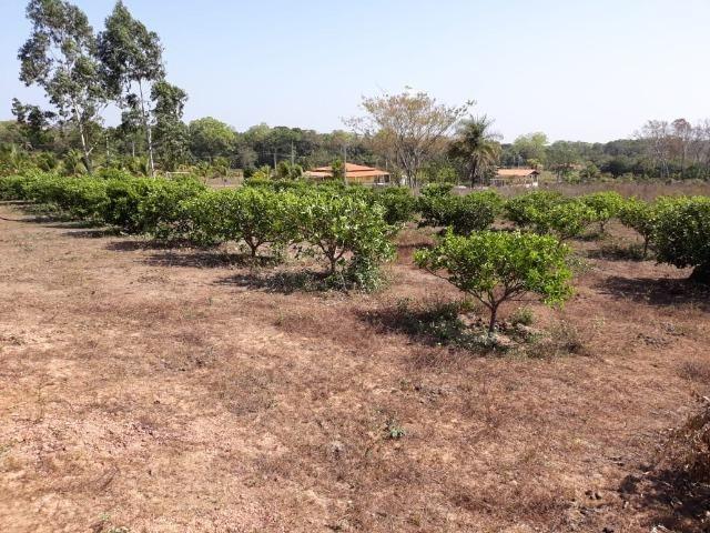 Chácara no Setor Agrícola, em Média, há 20km de Imperatriz - Foto 13
