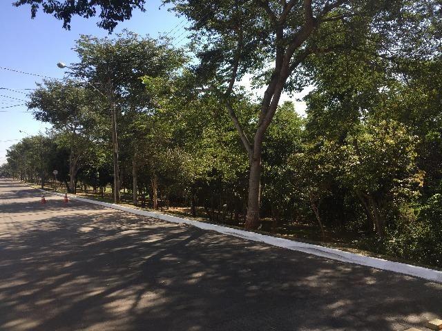 Condomínio jardins lote Madri de 487m², R$ 500 MIL - Foto 4