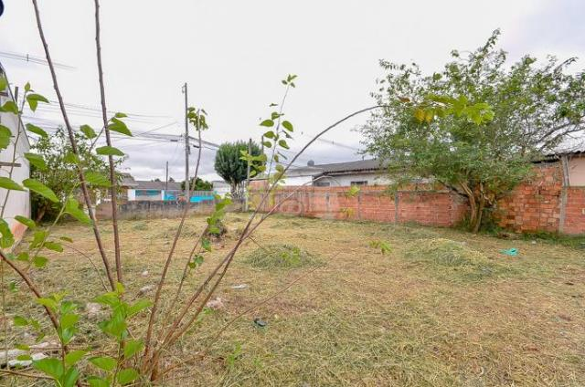Terreno à venda em Guatupê, São josé dos pinhais cod:144761 - Foto 13