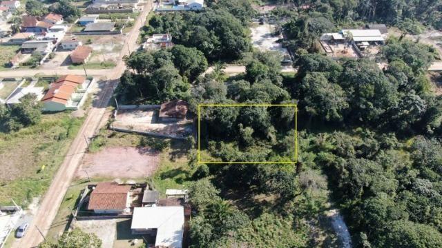 Terreno à venda, 544 m² por r$ 8.000 - praia das palmeiras - itapoá/sc