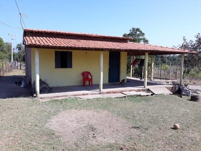 Chácara no Setor Agrícola, em Média, há 20km de Imperatriz - Foto 14