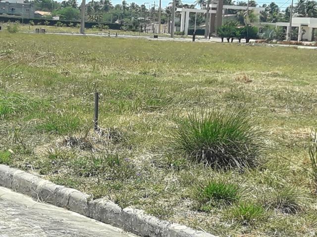 Terreno (lote) no condomínio Reserva Aimoré - Foto 12