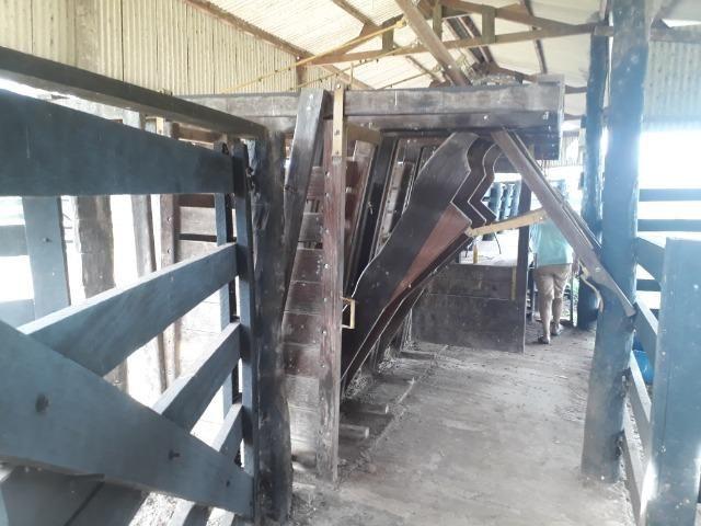 """Confinamento ou Laticínio na comunidade olho d""""agua na BR 364 a 30 km de Cuiabá - Foto 3"""