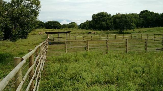 Belíssimo sítio em Agro Brasil - Cachoeiras de Macacu RJ 116 oportunidade!!!! - Foto 5
