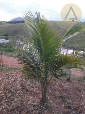 Terreno à venda, 870 m² por r$ 150.000 - quilombo - cantagalo/rj - Foto 11