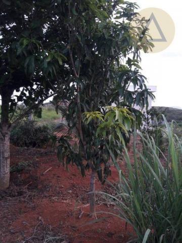 Terreno à venda, 870 m² por r$ 150.000 - quilombo - cantagalo/rj - Foto 6