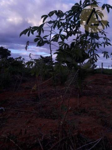 Terreno à venda, 870 m² por r$ 150.000 - quilombo - cantagalo/rj - Foto 15