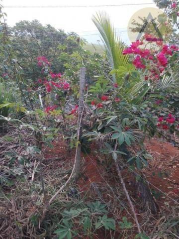 Terreno à venda, 870 m² por r$ 150.000 - quilombo - cantagalo/rj - Foto 2