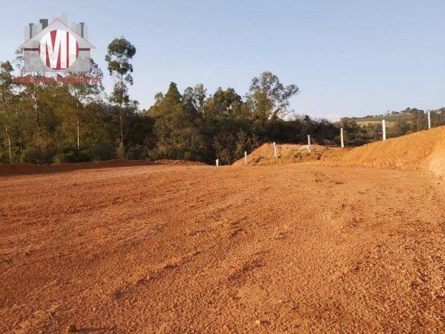 Lindo terreno com escritura, poço semi-artesiano e energia elétrica em Pedra Bela - Foto 3