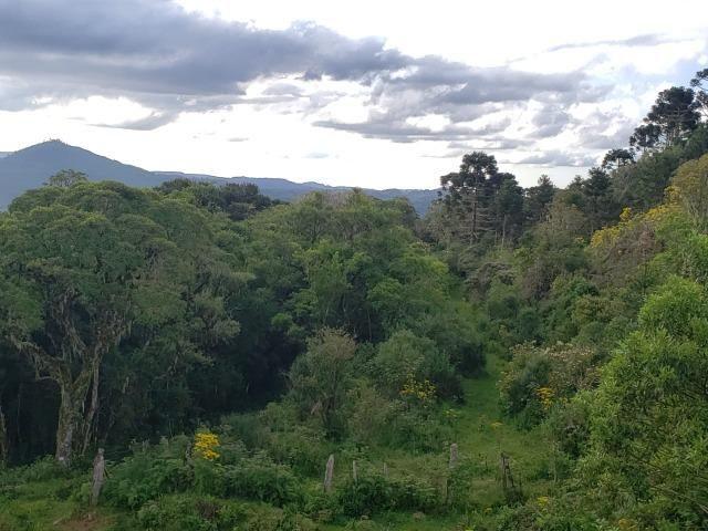 Belíssimo Sítio na Rota Turística de Urupema/Rio Rufino - Foto 11