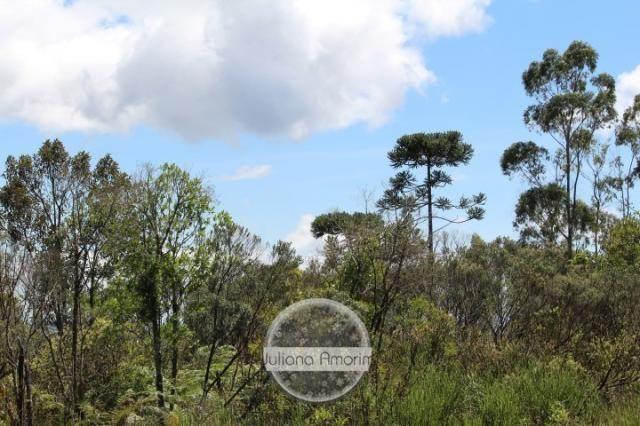 Seu sitio em Bom Retiro na Serra Catarinense - Foto 19