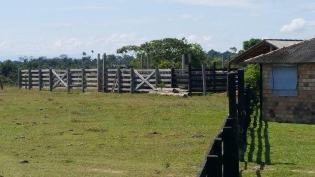 Fazenda de 1500 hectares em Alto Alegre/RR, ler descrição do anuncio - Foto 2