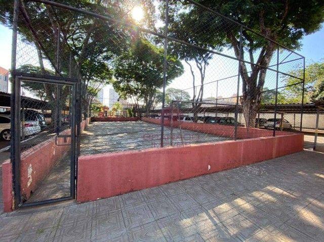 Apartamento com 3 dormitórios para alugar, 48 m² por R$ 700,00/mês - Vila Nova - Maringá/P - Foto 15