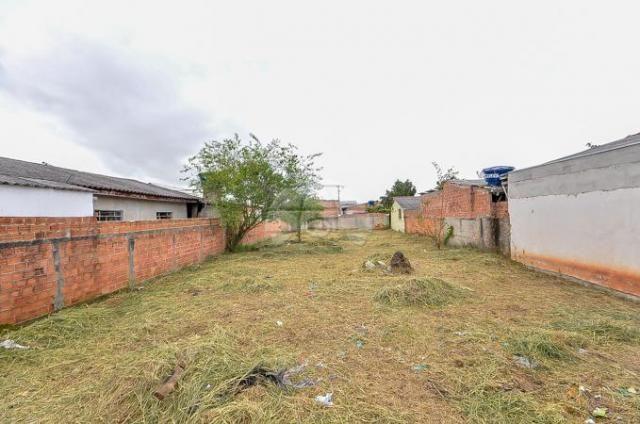 Terreno à venda em Guatupê, São josé dos pinhais cod:144761 - Foto 5