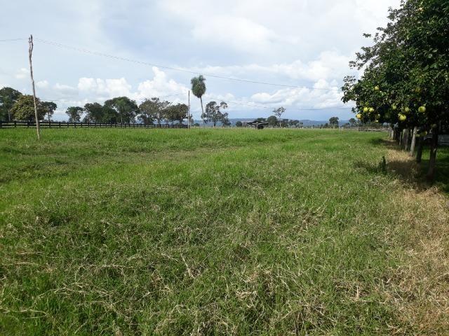 """Confinamento ou Laticínio na comunidade olho d""""agua na BR 364 a 30 km de Cuiabá - Foto 20"""