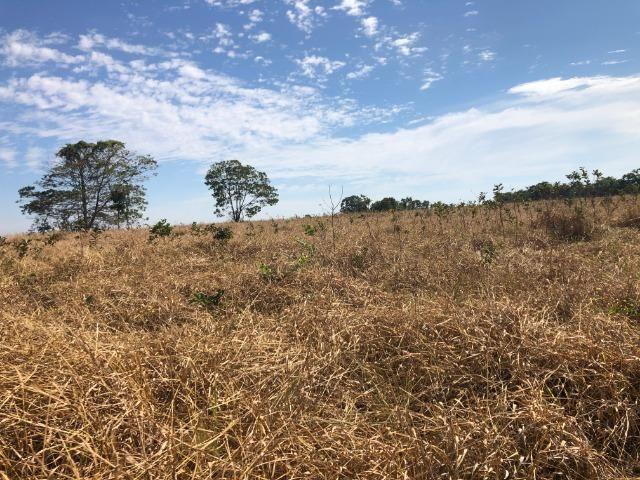 200 Alqueires, Região de Comodoro Pecuária Comodoro-MT Ótimo localização, próximo a cidade - Foto 2