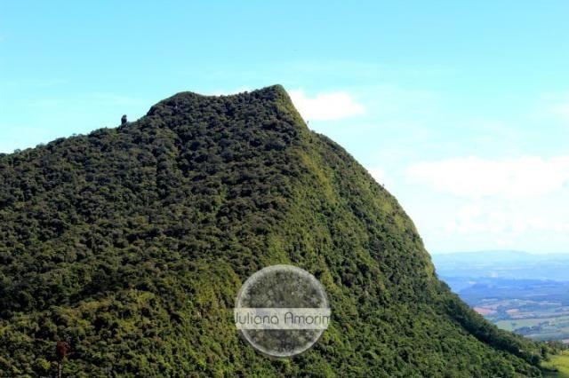 Seu sitio em Bom Retiro na Serra Catarinense - Foto 3