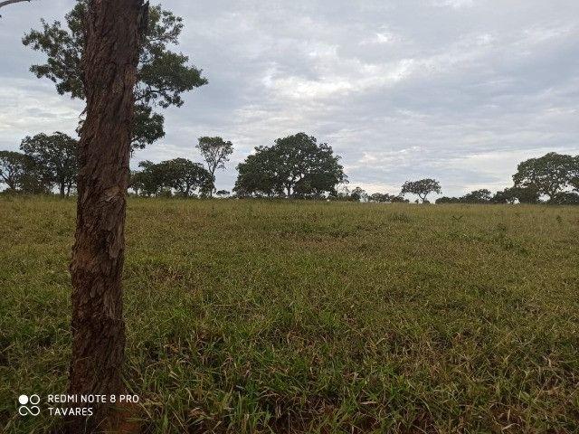 Terrenos Comerciais de 20.000 m² com Localização Privilegiada na MG-010 - Foto 13