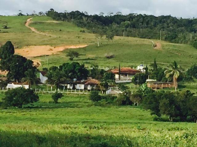 ~ Chácara em Salgado SE - Foto 7