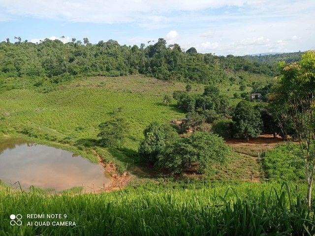 Vendo terra de 9,5 alqueires - Foto 4