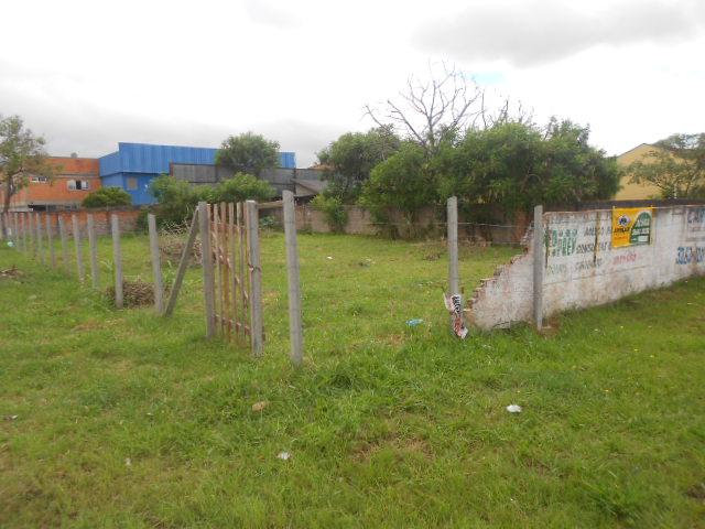 Terreno para alugar em Emiliano perneta, Pinhais cod:42018 - Foto 3
