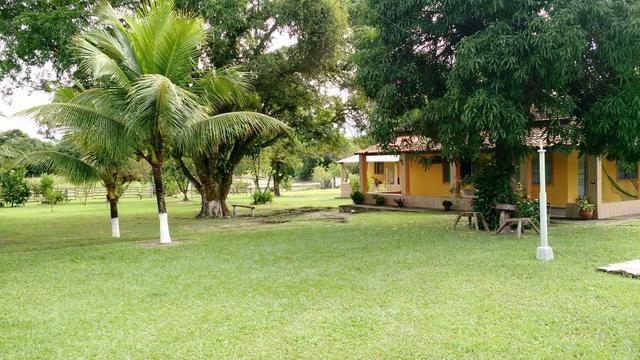 Belíssimo sítio em Agro Brasil - Cachoeiras de Macacu RJ 116 oportunidade!!!! - Foto 6