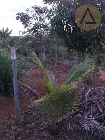 Terreno à venda, 870 m² por r$ 150.000 - quilombo - cantagalo/rj - Foto 7