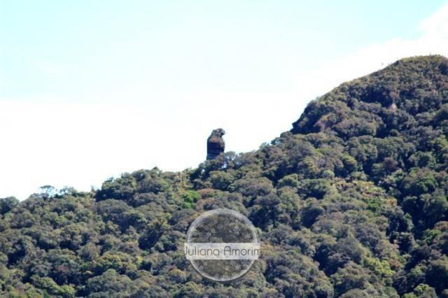 Seu sitio em Bom Retiro na Serra Catarinense - Foto 9