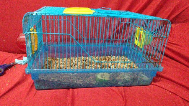 Vende-se gaiolas para hamster  - Foto 5