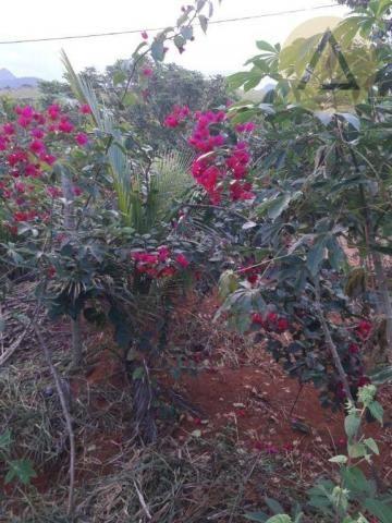 Terreno à venda, 870 m² por r$ 150.000 - quilombo - cantagalo/rj - Foto 5