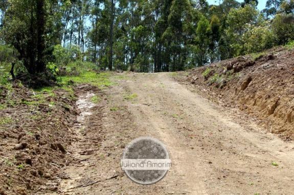 Seu sitio em Bom Retiro na Serra Catarinense - Foto 17