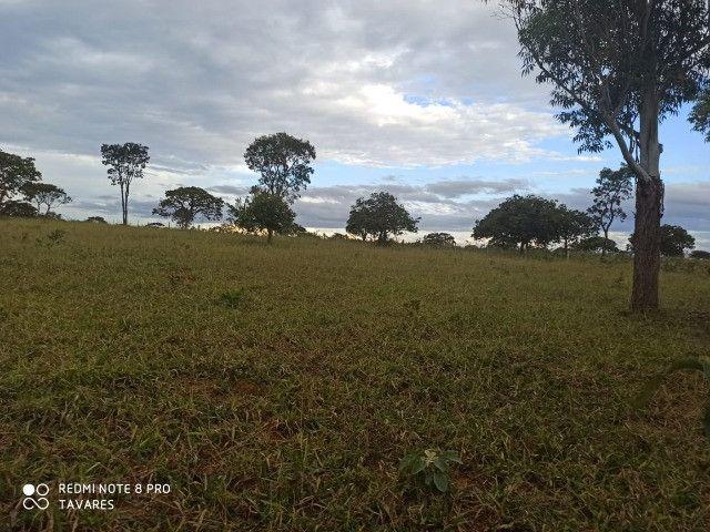 Terrenos Comerciais de 20.000 m² com Localização Privilegiada na MG-010 - Foto 5