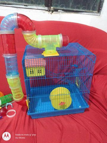 Vende-se gaiolas para hamster  - Foto 2