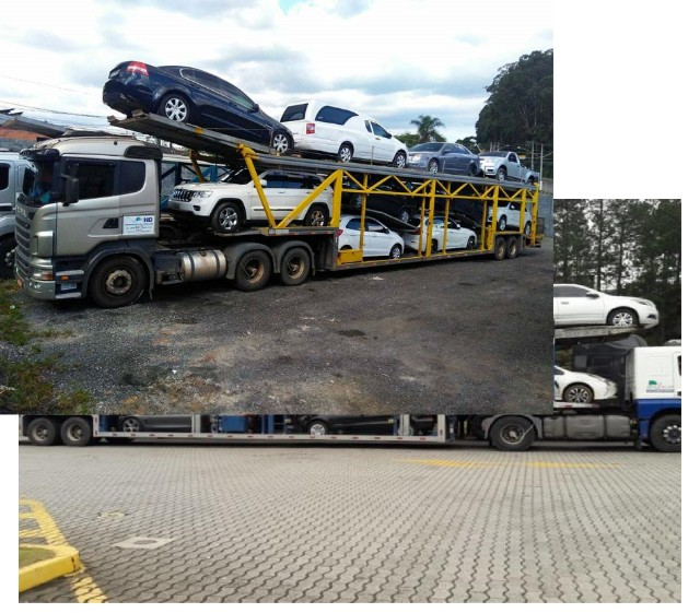 Ponto P. Transporte_cegonha carros e motos para todo Brasil cegonhas  com seguro total  - Foto 3