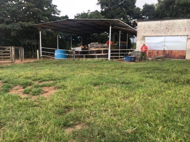 Fazenda 56 alqueires é meio  no município de Goianésia   - Foto 3