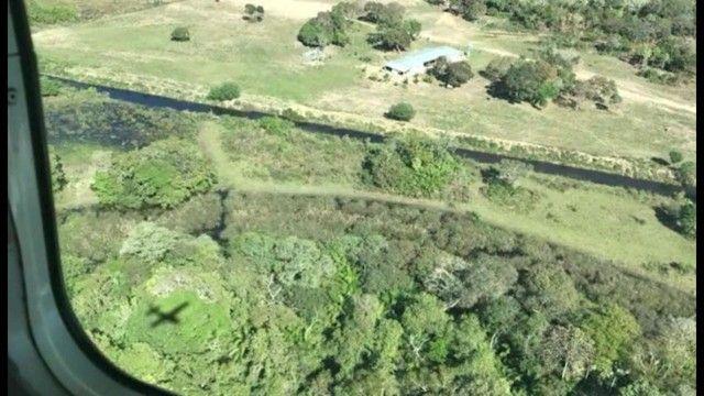 Fazenda em Pantanal Nhecolandia - Leilão Novo Horizonte - MS - Foto 13