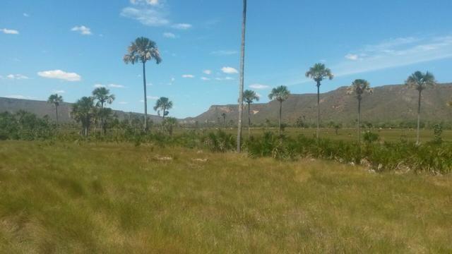 Vendo Fazenda Guarani de Goias