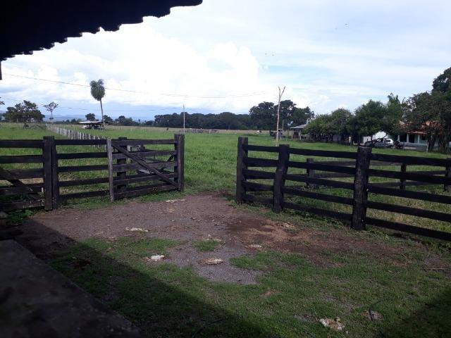 """Confinamento ou Laticínio na comunidade olho d""""agua na BR 364 a 30 km de Cuiabá - Foto 16"""