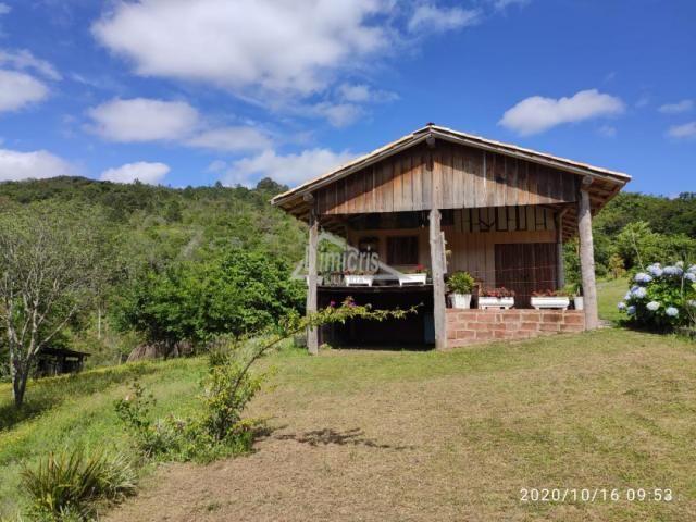 Chácara à venda com 1 dormitórios em Lomba grande, Novo hamburgo cod:167633 - Foto 2
