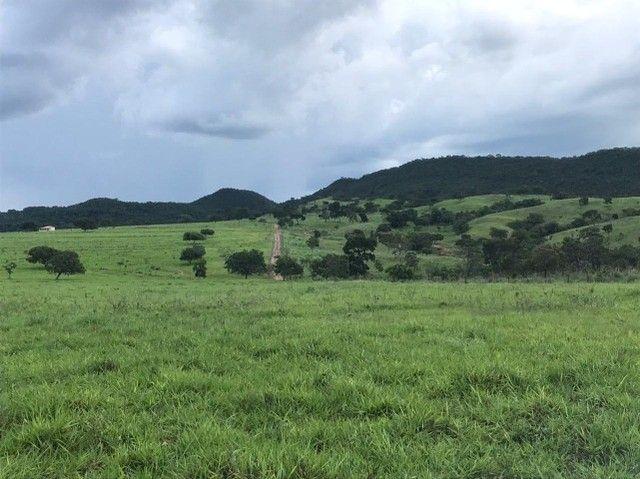 Fazenda 56 alqueires é meio  no município de Goianésia   - Foto 5