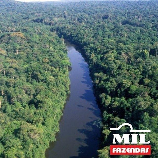 108.000 Há. Humaitá - Amazonas (Mata p/ Exploração) - Foto 2