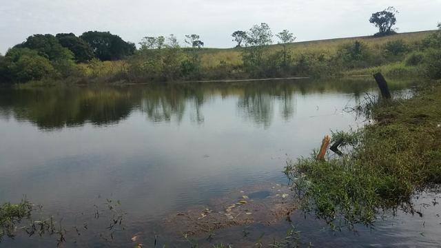 Sitio 4 alqueires em batatais 880 mil - Foto 14