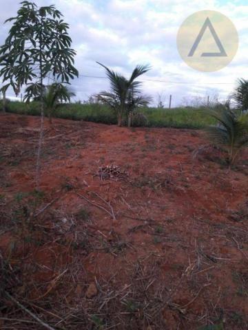 Terreno à venda, 870 m² por r$ 150.000 - quilombo - cantagalo/rj - Foto 14